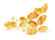CORN FLAKES DOLCESENZA